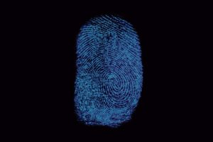 Polícia Federal gastou R$ 39,9 milhões com sistema novo de biometria